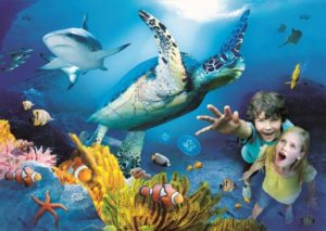 acquario sealife benalmadena