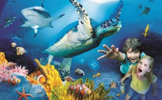 acquario sealife benalmadena