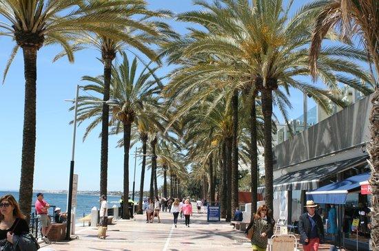 Bar caffetteria sul lungomare di Marbella in traspaso